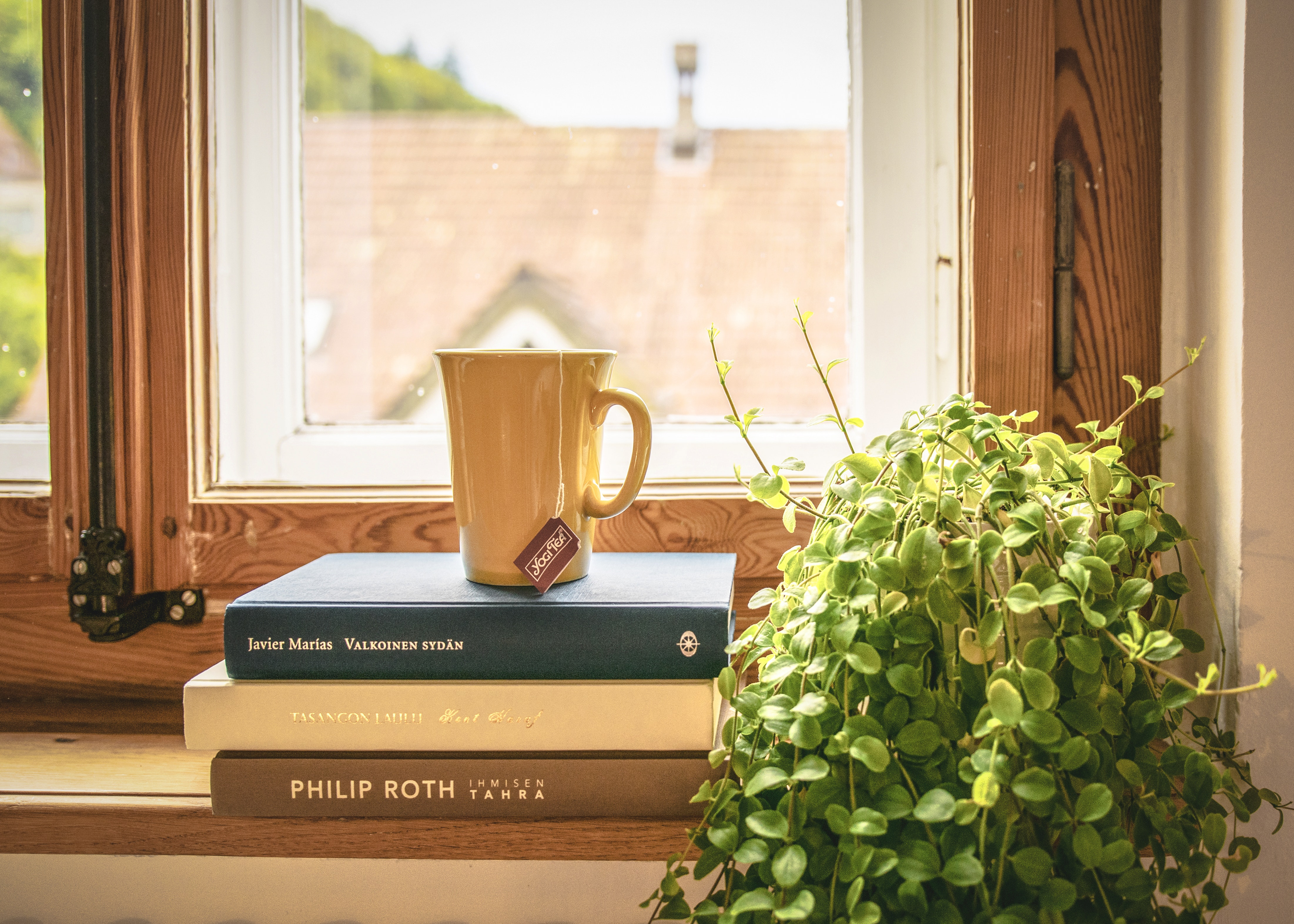 Stock of books and a cup of tea on a window sill at home